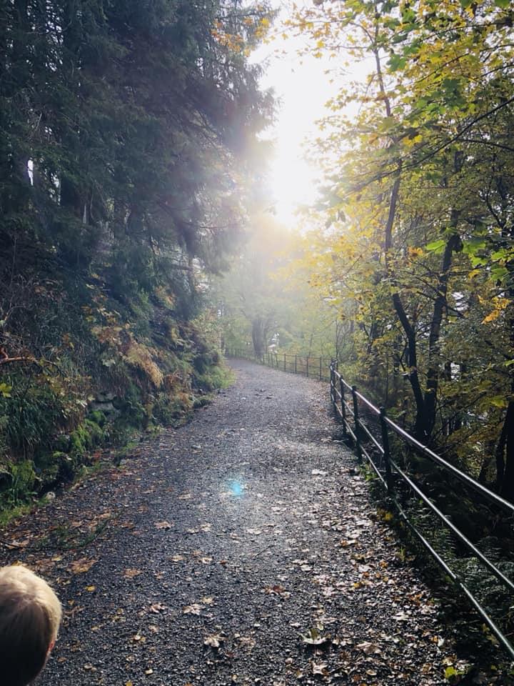 Floyen path